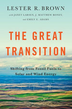 The Great Transition : Shifting from Fossil Fuels to Solar and Wind Energy - Lester R. Brown
