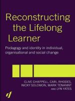 Reconstructing the Lifelong Learner : Pedagogy and Identity in Individual, Organisational and Social Change - Clive Chappell
