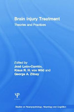 Brain Injury Treatment : Theories and Practices - Jose Leon-Carrion
