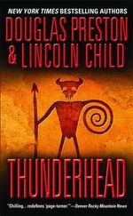 Thunderhead : A Guide to The Intelligent Investor, Security Anal... - Douglas Preston