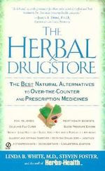 The Herbal Drugstore : The Best Natural Alternatives to over-the-Counter and Prescription Medicines - Linda B. White