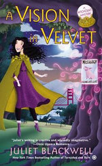 A Vision in Velvet : A Witchcraft Mystery - Juliet Blackwell