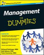 Management For Dummies - Richard Pettinger