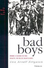 Bad Boys : Public Schools in the Making of Black Masculinity - Ann Arnett Ferguson