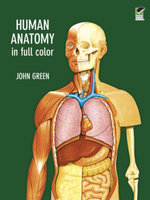 Human Anatomy in Full Color - John Green