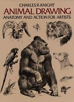 Animal Drawing : Anatomy and Action for Artists - Charles R. Knight