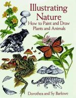 Illustrating Nature : How to Paint and Draw Plants and Animals - Dorothea Barlowe