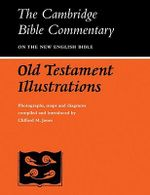 Old Testament Illustrations : Photographs, Maps and Diagrams - Clifford Merton Jones