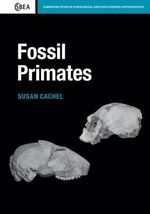 Fossil Primates : Cambridge Studies in Biological and Evolutionary Anthropology - Susan Cachel