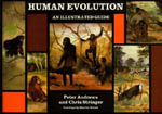 Human Evolution : An Illustrated Guide - Peter Andrews