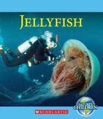 Jellyfish - Katie Marsico