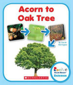 Acorn to Oak Tree : Rookie Read-About Science (Library) - Lisa M Herrington