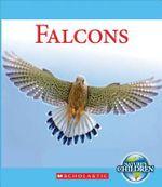 Falcons - Katie Marsico