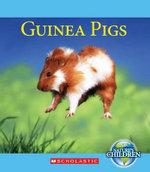 Guinea Pigs - Katie Marsico