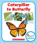 Caterpillar to Butterfly - Lisa M Herrington