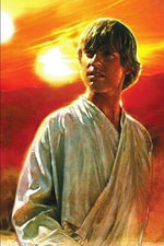 Luke Skywalker :  New Hope Luke Skywalker Bio - Ryder Windham