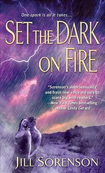 Set the Dark on Fire - Jill Sorenson