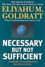 Necessary But Not Sufficient : A Theory of Constraints Business Novel - Eliyahu M. Goldratt