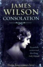 Consolation : A Novel of Mystery - James Wilson