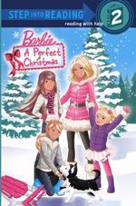 A Perfect Christmas - Christy Webster