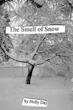 The Smell of Snow - Holly Day