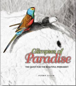 Glimpses of Paradise : The Quest for the Beautiful Parrakeet - Penny Olsen