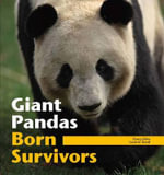 Giant Pandas : Born Survivors - Zhang Zhihe
