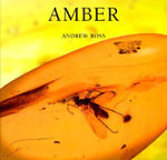 Amber : Life and Labor in Precarious Times - Andrew Ross