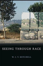 Seeing Through Race : W. E. B. Du Bois Lectures - W. J. T. Mitchell