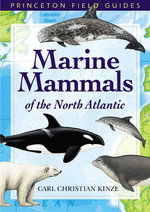 Marine Mammals of the North Atlantic - Carl Christian Kinze
