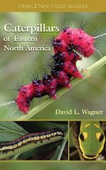 Caterpillars of Eastern North America : A Guide to Identification and Natural History - David L. Wagner