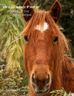 Wild and Free : Horses of the Outer Banks - Garrett Fisher