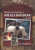The Practical Guide to Buying and Running a Smallholding in Wales - Liz Shankland