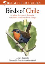 Birds of Chile : Including the Antartic Peninsular, the Falkland Islands and South Georgia - Alvaro Jaramillo