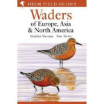 Waders of Europe, Asia and North America :  The Real Story - Stephen Message