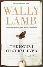 The Hour I First Believed - Wally Lamb