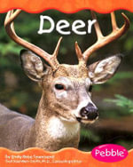 Deer - Emily Rose Townsend