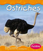 Ostriches - William John Ripple