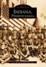 Indiana : Strategy Guides for New Times - Karen Wood