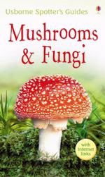 Mushrooms and Funghi - Richard Clarke