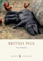 British Pigs : Shire Library - Val Porter
