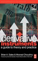 Derivative Instruments : A Guide to Theory and Practice - Brian Eales