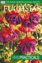 Fuchsias : RHS Practicals - The Royal Horticultural Society