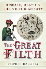 The Great Filth : Disease, Death and the Victorian City - Stephen Halliday