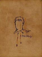 The Books of Albion : the Collected Writings of Peter Doherty - Peter Doherty