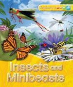 Explorers : Insects and Minibeasts - Jinny Johnson