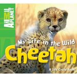 Cheetah - My Life in the Wild : Animal Planet - A Life Cycle book - Meredith Costain