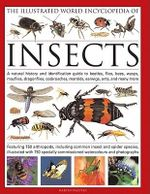 The Illustrated World Encyclopaedia of Insects : A Natural History and Identification Guide to Beetles, Flies, Bees Wasps, Springtails, Mayflies, Stoneflies, Dragonflies, Damselflies, Cockroaches, Mantids, Earwigs ... and Many More - Martin Walters