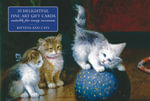 Card Box of 20 Notecards and Envelopes : Kittens and Cats - Peony Press