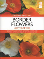 Border Flowers - Lucy Summers